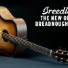 Breedlove Guitars – New Burst Finish