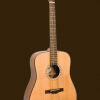 SIERRA GUITARS SEQUOIA ACOUSTIC DREADNOUGHT