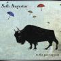SETH AUGUSTUS + To the Pouring Rain