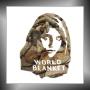 WORLD BLANKET